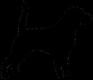 hundestudio_bremen_hund_logo_frei
